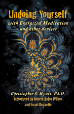 Image for Undoing Yourself: With Energized Meditation and Other Devices