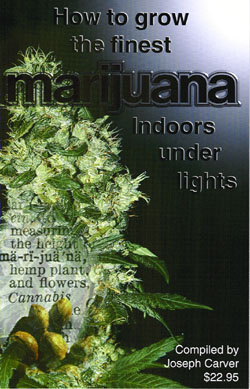 Image for How to Grow the Finest Marijuana Indoors Under Lights