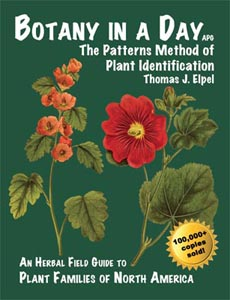 Image for Botany In A Day: The Patterns Method of Plant Identification